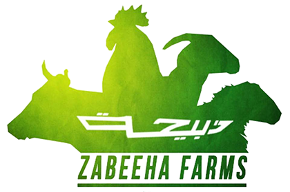 ZABEEHA FARMS